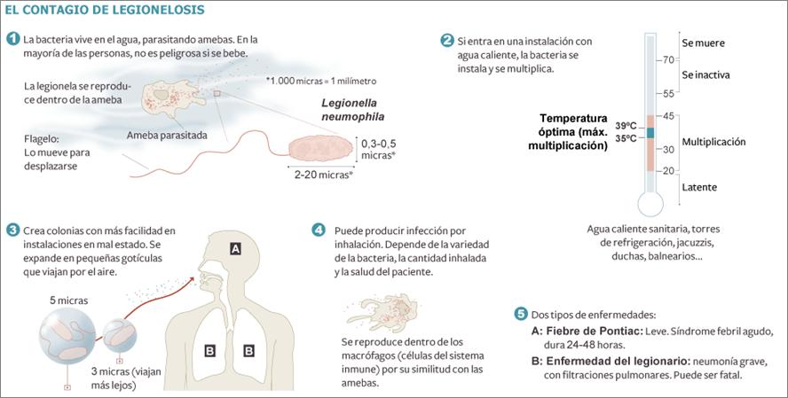 legionella-legionelosis_y_enfermedad_del_legionario